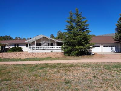 Payson Single Family Home For Sale: 1611 W Mesa Drive