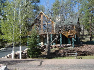 Payson Single Family Home For Sale: 1305 S Hunter Creek Drive