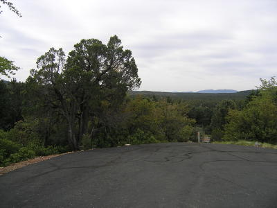 Pine Residential Lots & Land For Sale: Lot 12 Drumecho Circle
