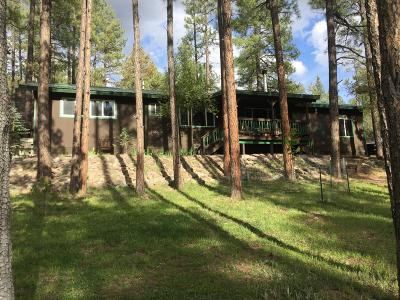 Payson Single Family Home For Sale: 147 S Pleasant Ln