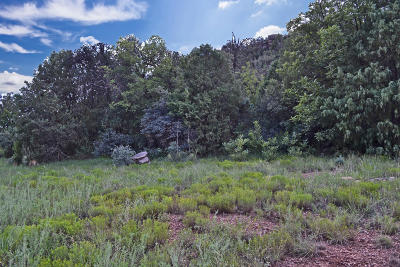 Payson Residential Lots & Land For Sale: 39 S Paint Pony Drive