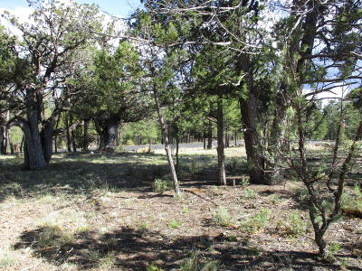 Happy Jack Residential Lots & Land For Sale: 1914 Cedar Canyon Circle