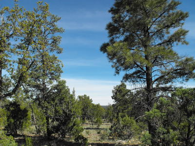 Happy Jack Residential Lots & Land For Sale: 8276 Haven Crest Drive
