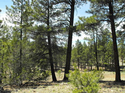 Happy Jack Residential Lots & Land For Sale: 2596 Katies Way