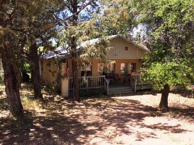 Payson Single Family Home For Sale: 325 W Corral Drive