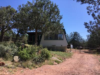 Payson Single Family Home For Sale: 243 N Helen Drive