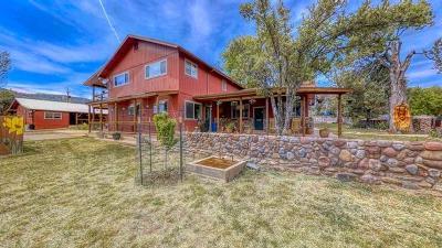 Pine Single Family Home For Sale: 4042 Az-87