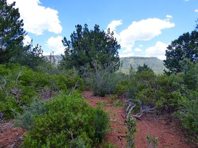 Pine Residential Lots & Land For Sale: 4287 N Valley View Drive