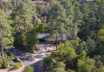 Payson Single Family Home For Sale: 702 S Manzanita Drive
