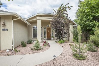 Payson Single Family Home For Sale: 509 W Laredo Loop
