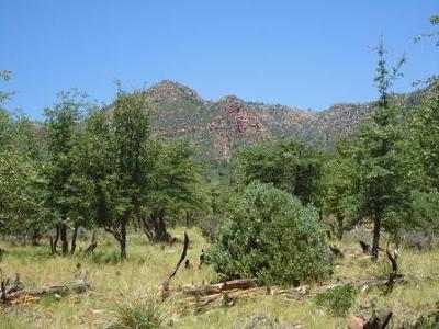 Payson Residential Lots & Land For Sale: Lot 31 Coues Deer Ln