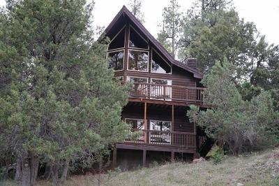 Payson Single Family Home For Sale: 173 S Turkey Circle