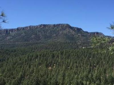 Payson Residential Lots & Land For Sale: 136 S Hunter Creek Drive