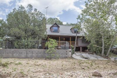 Payson Single Family Home For Sale: 38 N Sleepy Hollow Drive