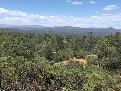 Payson Residential Lots & Land For Sale: 6 N Tyler Parkway