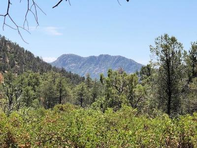 Payson Residential Lots & Land For Sale: 601 S Rim Club Parkway