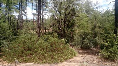 Payson Residential Lots & Land For Sale: 1802 E Senna Point