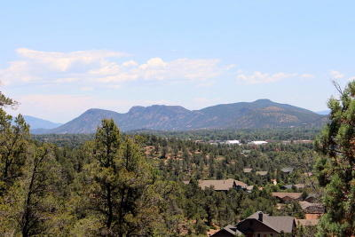 Payson Residential Lots & Land For Sale: 1 W Falcon Crest Drive