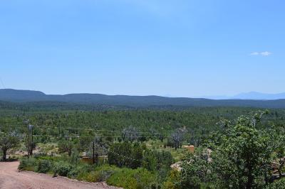 Payson Residential Lots & Land For Sale: 21 N Rocking Horse Bend