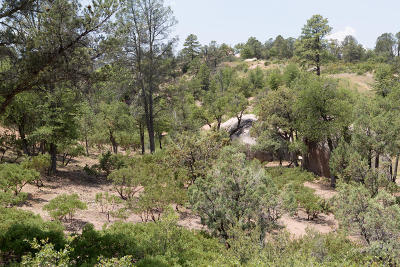 Payson Residential Lots & Land For Sale: 91 S Monument Valley Drive