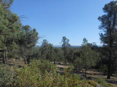 Payson Residential Lots & Land For Sale: 1102 S Milk Ranch Point