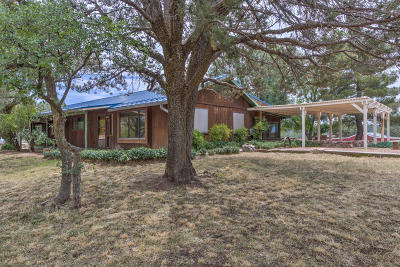 Payson Single Family Home For Sale: 201 W Midway Street