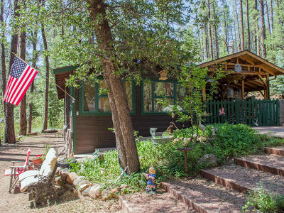 Payson Single Family Home For Sale: 881 Fsr 199