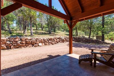 Payson Single Family Home For Sale: 488 W Homestead Lane