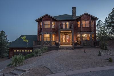 Payson Single Family Home For Sale: 1903 E Horizon Circle