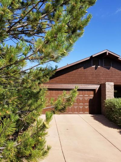 Payson Single Family Home For Sale: 902 S Lakeview Drive