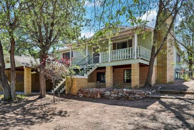 Payson Single Family Home For Sale: 505 N William Tell Circle