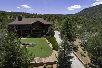 Pine AZ Single Family Home For Sale: $599,000