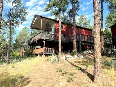 Payson Single Family Home For Sale: 199 S Greystone Circle
