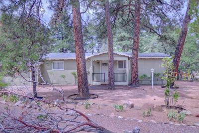Payson Single Family Home For Sale: 712 N Manzanita Drive