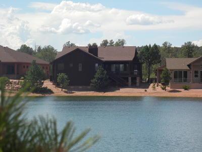 Chaparral Pines Single Family Home For Sale: 1709 E Velvet Mesquite Ct