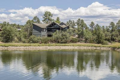 Payson Single Family Home For Sale: 1006 N Scenic Drive