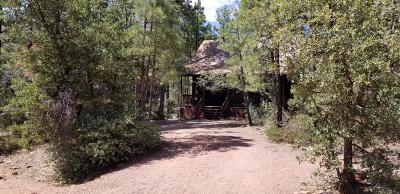 Pine AZ Single Family Home For Sale: $199,000