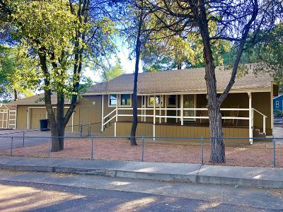 Payson Single Family Home For Sale: 1311 N Matterhorn Road