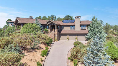 Chaparral Pines Single Family Home For Sale: 2505 E Golden Aster Circle