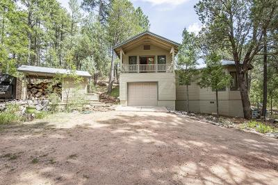 Payson Single Family Home For Sale: 113 S Hiscox Lane