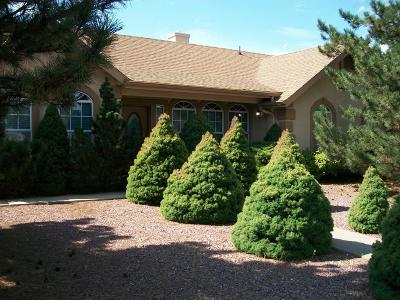 Payson Single Family Home For Sale: 312 N Trailwood Road