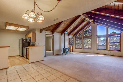 Payson Single Family Home For Sale: 1127 N Bavarian Way