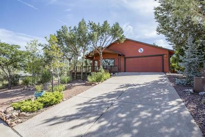 Payson Single Family Home For Sale: 1021 S Ponderosa Street