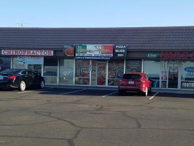 Lake Havasu City Commercial For Sale: 1670 N McCulloch Blvd