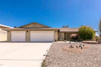 Lake Havasu City Single Family Home For Sale: 3160 Horseshoe Canyon Dr