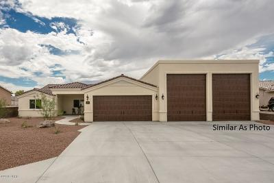 Lake Havasu City Single Family Home For Sale: 2549 Citrus Ln