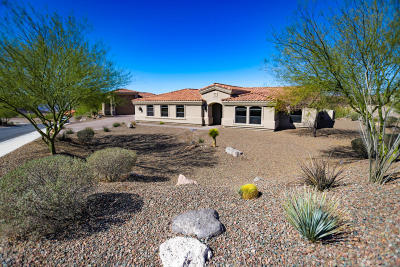Lake Havasu City AZ Single Family Home For Sale: $1,100,000