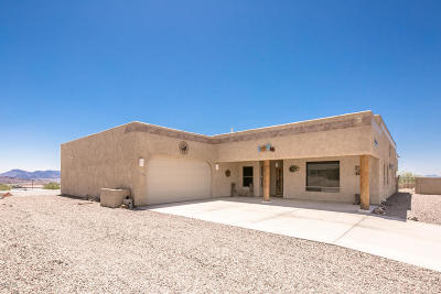 Lake Havasu City Single Family Home For Sale: 3528 Pioneer Dr Dr