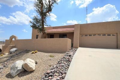 Lake Havasu City Single Family Home For Sale: 1750 Peruvian Ln