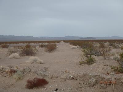La Paz County Residential Lots & Land For Sale: 39751 Avenue 44e